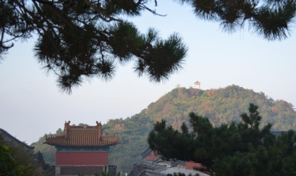 淄博出发到 曲阜、泰山(观日出)两日旅游 淄博元通旅行社